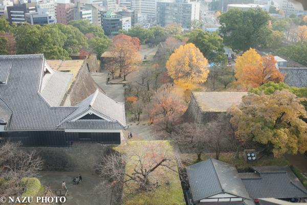 kumamoto-3.jpg