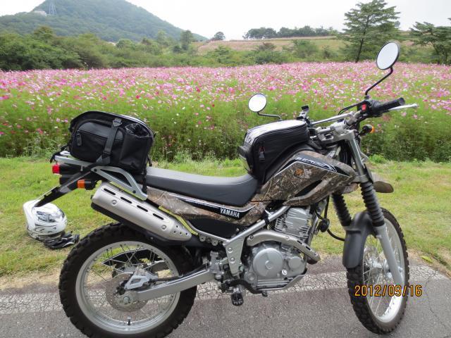 IMG_0019_convert_20120916123856.jpg