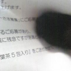 141025c.jpg