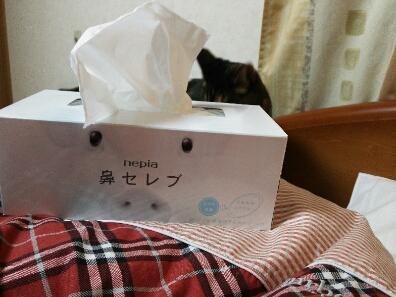 風邪かぁ~