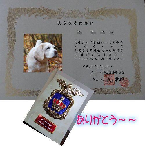 201410271813497cb.jpg