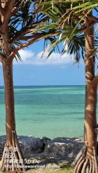 沖縄,海,壁紙,iPhone5用