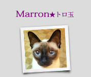 Marron★トロ玉