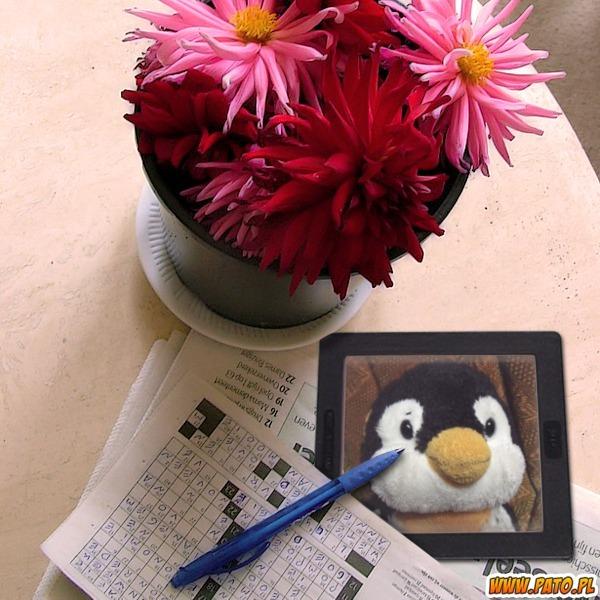 花鉢とクロスワードパズル