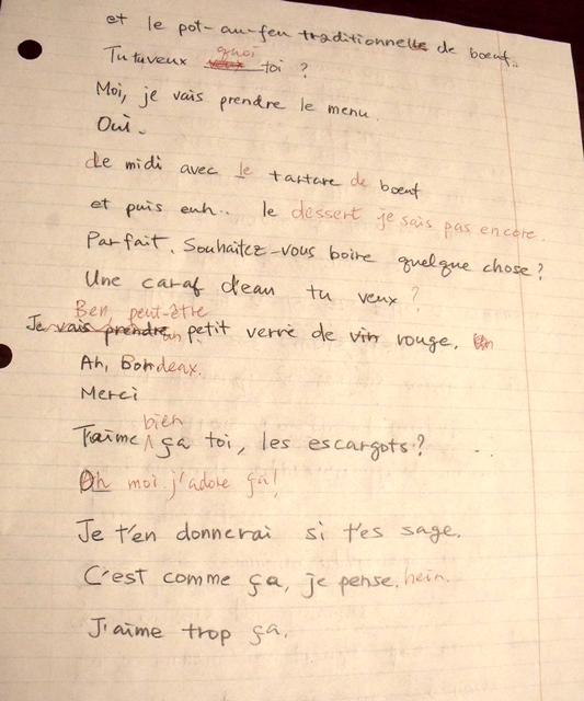 虎と小鳥のフランス日記 82話 ディクテ2