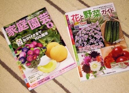 my-garden 145 (2)