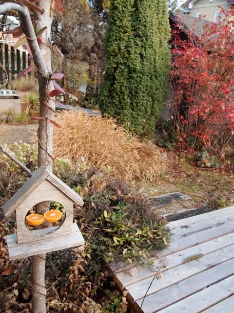 my-garden 047 (3)