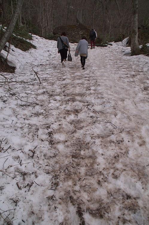 戸隠神社は雪景色 二