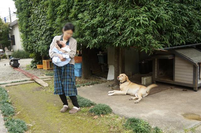 カミさんと赤ちゃんと番犬