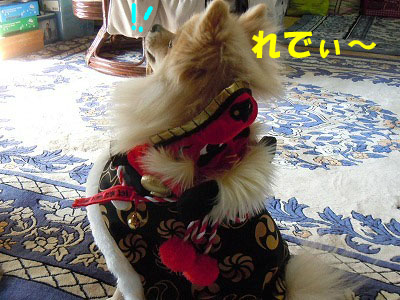 snap_rikineechan_20131123535.jpg