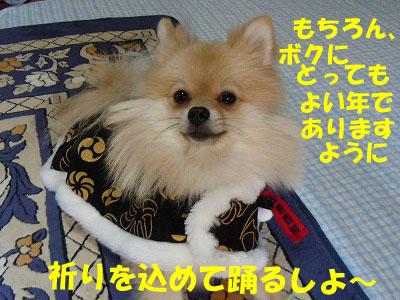 snap_rikineechan_20131123592.jpg