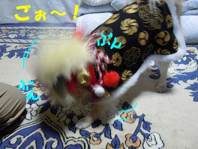 snap_rikineechan_2013120916.jpg