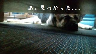 20120627133131f71.jpg