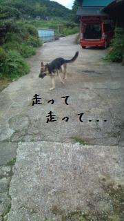 20120707103723fa1.jpg