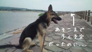 201207110924100c4.jpg