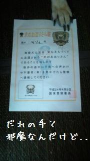 201207191250392d3.jpg
