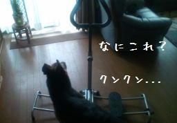 20120721112000838.jpg