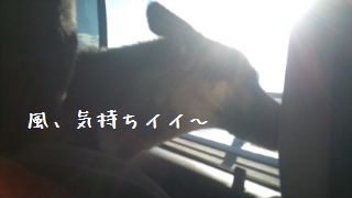 20120820093415a31.jpg
