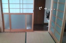 2012082811234089f.jpg