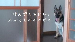 20120828112341094.jpg