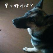 20120911134625922.jpg