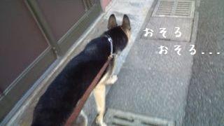 2012092011123816d.jpg