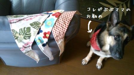 20121006103927463.jpg