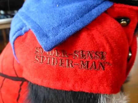 スパイダーマン8