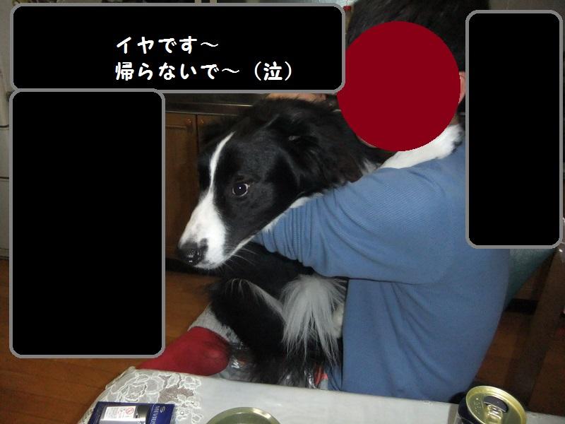 DSCF3899.jpg
