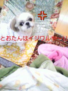 moblog_393e10ae.jpg