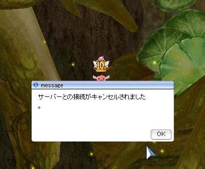 20121211_15.jpg