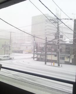 日本道観前の被害