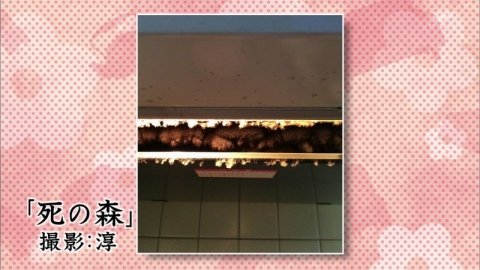 20141021_18.jpg