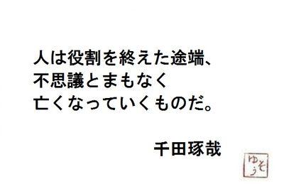 20130109213538300.jpg