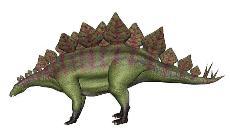 stegosaurus-yoko.jpg