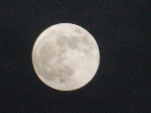 20121129200948cf1.jpg