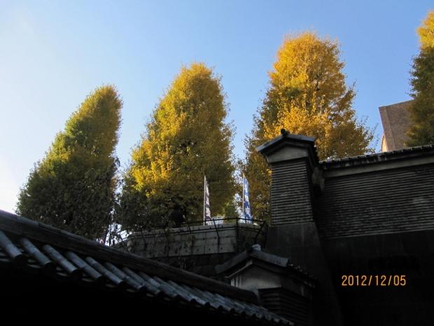 201212110547070cd.jpg