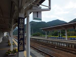 daigoeki1.jpg