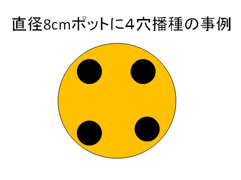 2013031111200506c.jpg