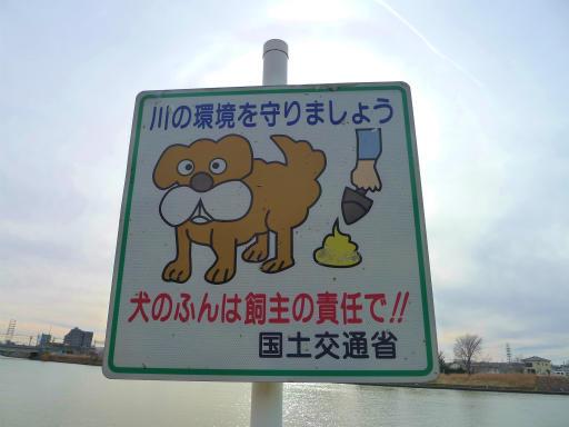 20120107・葛飾05-11