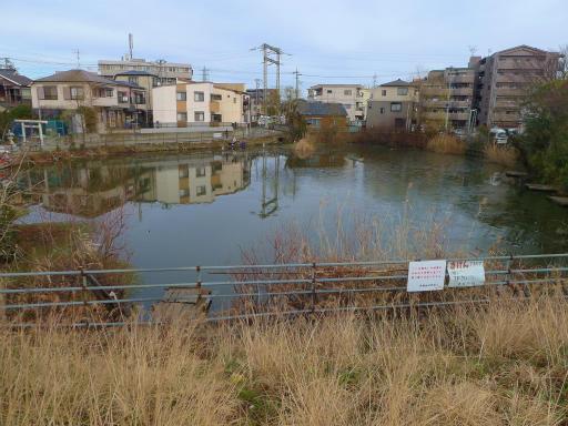 20120107・葛飾05-13