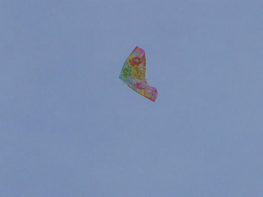 20120107・葛飾09-09