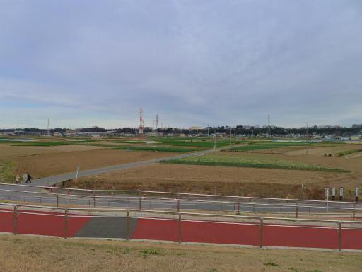 20120107・葛飾09-16