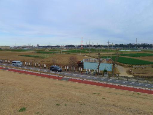 20120107・葛飾09-13