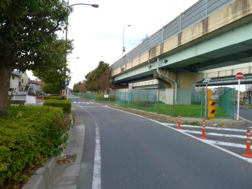 20120107・葛飾10-06