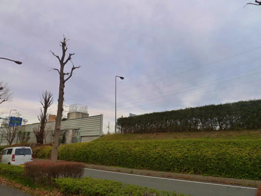 20120107・葛飾10-09