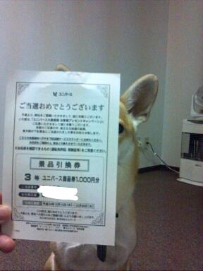 fc2blog_20121213203148a49.jpg