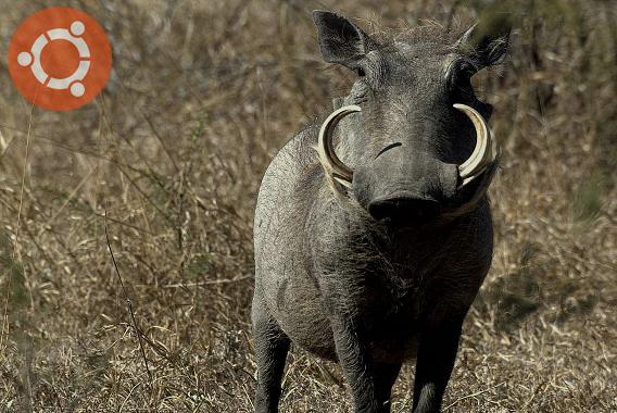 Ubuntu 4.10 Warty Warthog