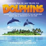 dolphinsst.jpg