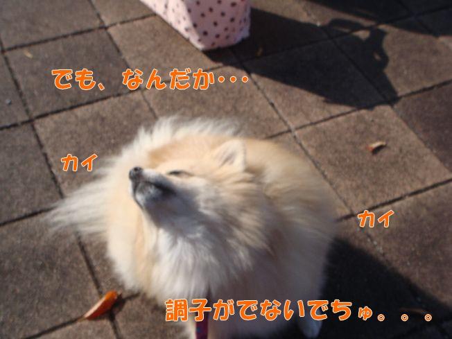10_27_02.jpg